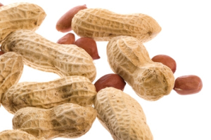 Isolated macro image of groundnuts.
